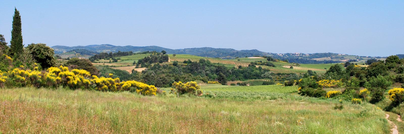 Le Domaine Saint Martin - Panorama